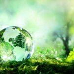 XXVI Экологический форум